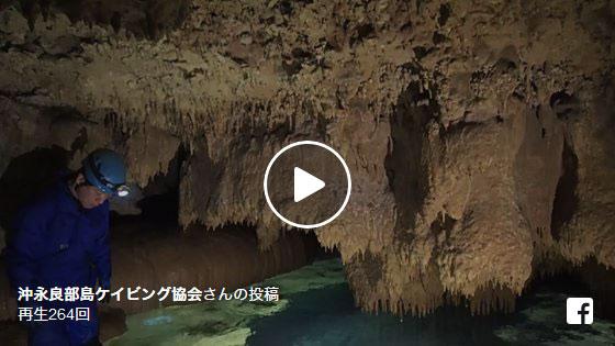 大蛇洞 沖永良部島ケイビング
