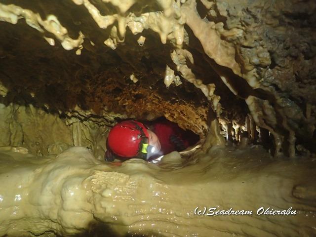水連洞・リムストーン